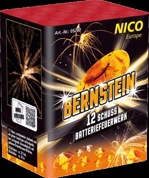 Nico Bernstein 12-Schuss