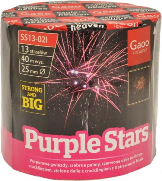 Gaoo Purple Stars 13-Schuss