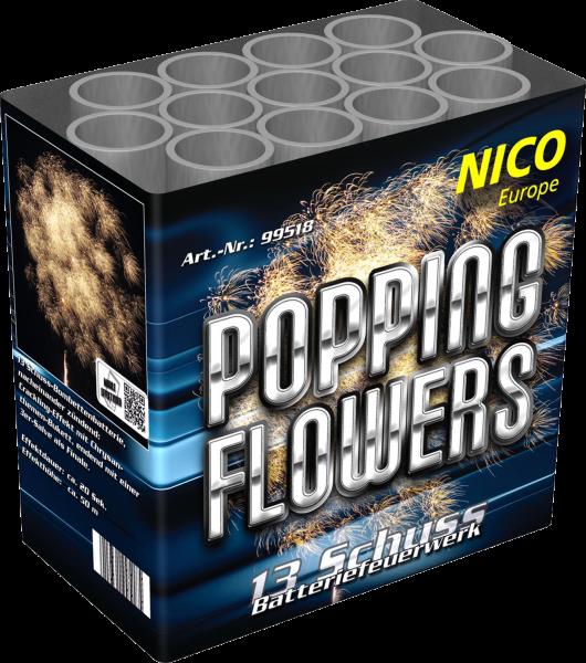 Nico Popping Flowers 13-Schuss
